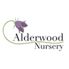 Alderwood Nursery